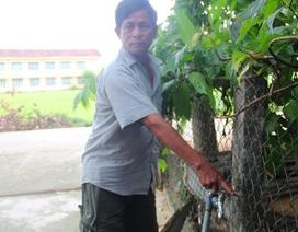 """Bình Định: Ống dẫn nước sạch về tận nhà, dân vẫn """"khát"""" nước"""
