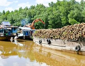 Hàng trăm hộ dân bắc cầu qua kênh, ngăn tàu ghe vận chuyển mía lưu thông