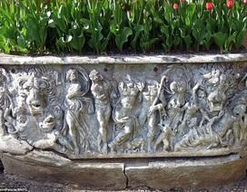 Quách cổ 1.800 năm tuổi trị giá 8 tỷ đồng bị đem làm… chậu hoa