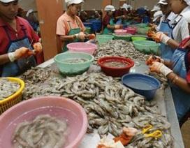 Malaysia và Thái Lan siết chặt quản lý lao động nhập cư
