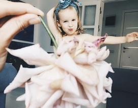 """Cô bé 3 tuổi bỗng dưng thành """"ngôi sao"""" trên Internet nhờ chụp ảnh với thức ăn, hoa quả"""