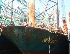 Bí thư tỉnh Bình Định: Công ty đóng tàu không hợp tác sửa chữa thì khởi kiện ra tòa