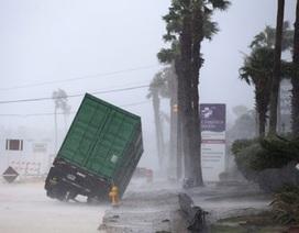 """Cư dân mạng """"hãi hùng"""" với cơn bão lịch sử đổ bộ vào nước Mỹ"""