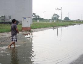 Hy hữu ở Hà Nội: Nước ngập cả tuần, người dân... chăn vịt giữa phố