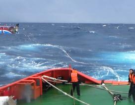 15 ngư dân đang gặp nguy trên biển vì tàu hỏng máy