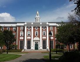 Học bổng 50-100% Đại học Mỹ - Đa ngành: Không khó