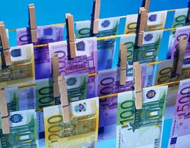EU yêu cầu tiết lộ chủ sở hữu thật trong hồ sơ Panama  Thế giới