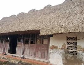 Độc đáo những ngôi nhà mái cói còn lại hiếm hoi ở Ninh Bình