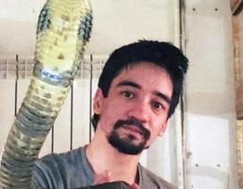 Cho rắn độc cắn rồi livestream cảnh chết dần để xin lỗi vợ