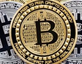 Có bao nhiêu người bị lừa mất tiền tỉ từ Bitcoin?