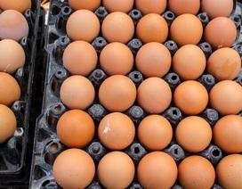 Phát hiện và thu giữ 6 nghìn quả trứng gà nhập lậu