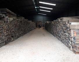 Ứ đọng hàng ngàn khối gỗ Lào, hiệp hội doanh nghiệp cầu cứu Chính phủ