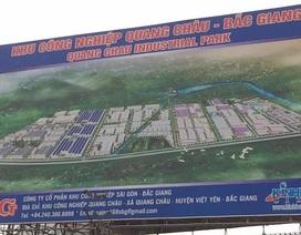 Bắc Giang: Cây lúa biến dạng cạnh khu công nghiệp, nguyên nhân bí ẩn gì?
