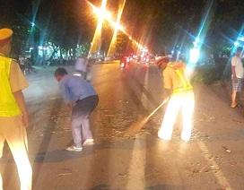 CSGT cùng người dân dọn cây đổ trong đêm