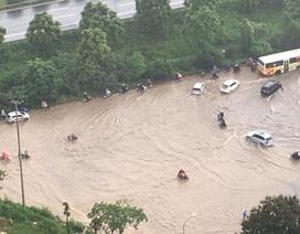 """Hàng nghìn người vật vã """"lội sông"""" trên đại lộ hiện đại nhất Việt Nam"""