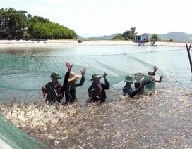 5 nguyên tắc sử dụng kháng sinh trong nuôi trồng thủy sản