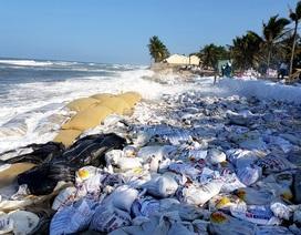 Khẩn cấp làm kè chống sạt lở bờ biển Cửa Đại