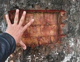 Công an điều tra vụ hàng loạt cây xà cừ trên đường Láng bị lột vỏ