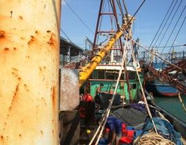 Bình Định: Vụ tàu vỏ thép hư hỏng: Bất ổn từ hợp đồng?