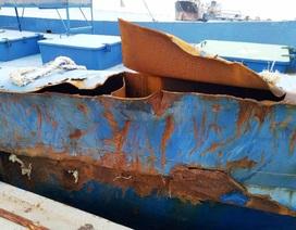 """Tàu vỏ thép 67 nằm bờ vì hư hỏng, chủ tàu lại """"cầu cứu"""""""