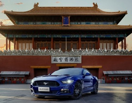 Ford sẽ trang bị động cơ hybrid cho Mustang và F-150