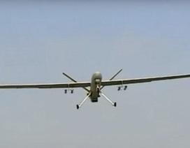 CIA tiêu diệt con rể của trùm khủng bố Osama bin Laden tại Syria