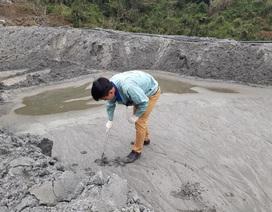 Vụ vỡ bể lắng chất thải quặng: Tiếp tục lấy mẫu bùn thiếc để phân tích