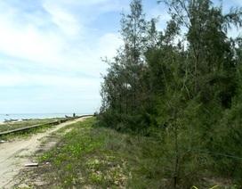 Nữ đại gia bí ẩn buông chục tỷ đồng mua đất ven biển Tam Kỳ