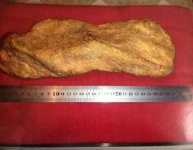 Thợ máy xúc múc được cục vàng 10kg nguyên khối
