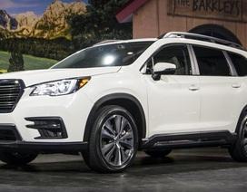 SUV lớn nhất của Subaru chính thức ra mắt