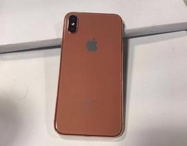 iPhone 8 Pro mới có kính sapphire, còn lại đều là kim loại