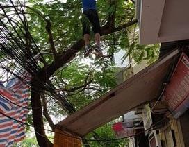 Người đàn ông Hàn Quốc chết trong tư thế treo cổ trên đường phố Hải Phòng