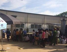 Thanh Hóa: Hàng trăm công nhân đình công đã đi làm trở lại