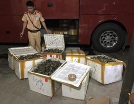 Cảnh sát giao thông liên tục phát hiện nhiều thực phẩm không nguồn gốc