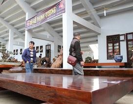 """""""Choáng"""" với những sập gỗ nghìn năm giá bạc tỷ của đại gia Việt"""