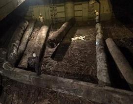 Gỗ trong hầm hàng đè một thuyền phó người Trung Quốc tử vong