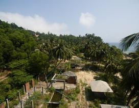 Dự án du lịch ở Cù Lao Chàm có sai phép?