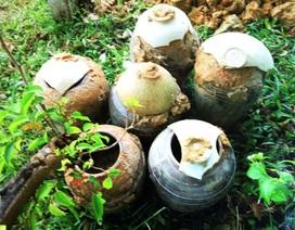 Đào hố chôn cột điện, phát hiện 6 chiếc bình cổ