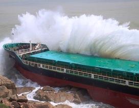 Huy động tối đa nguồn lực tìm kiếm nạn nhân mất tích trên biển