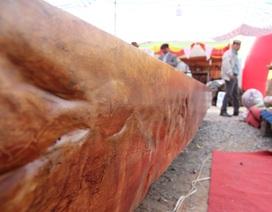 Chiêm ngưỡng sập gỗ Cẩm nghìn năm tuổi giá hơn 3 tỷ ở Hà Nội