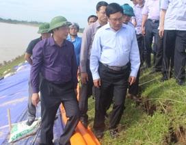 Phó Thủ tướng Phạm Bình Minh thị sát đê tại Thanh Hóa