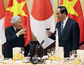 Quốc yến chiêu đãi Nhật hoàng và Hoàng hậu tại Phủ Chủ tịch
