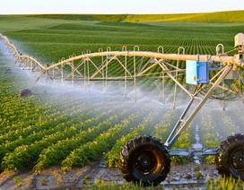 """Doanh nghiệp đầu tư vào nông nghiệp còn quá """"hẻo"""": Chỉ chiếm dưới 1%"""