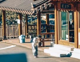 Hàn Quốc đẹp như phim qua góc máy của hai anh em sinh đôi người Việt