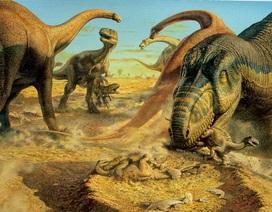 Tìm thấy ổ trứng khủng long 130 triệu năm tuổi