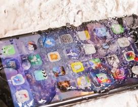 Apple cho người dùng sửa chữa iPhone miễn phí