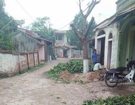 """Hàng loạt cây xanh bị chặt hạ trong chiến dịch """"đòi"""" vỉa hè của Hà Nội"""