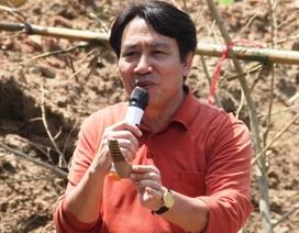 Tìm lại giá trị thực cho gốm cổ tại Bình Định