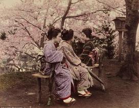 Tinh hoa của 100 năm nhiếp ảnh đầu tiên trong lịch sử