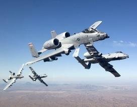 """""""Lợn lòi"""" A -10 của Mỹ sẽ tiếp tục sống thọ"""
